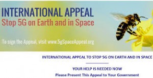 appeal stop 5G